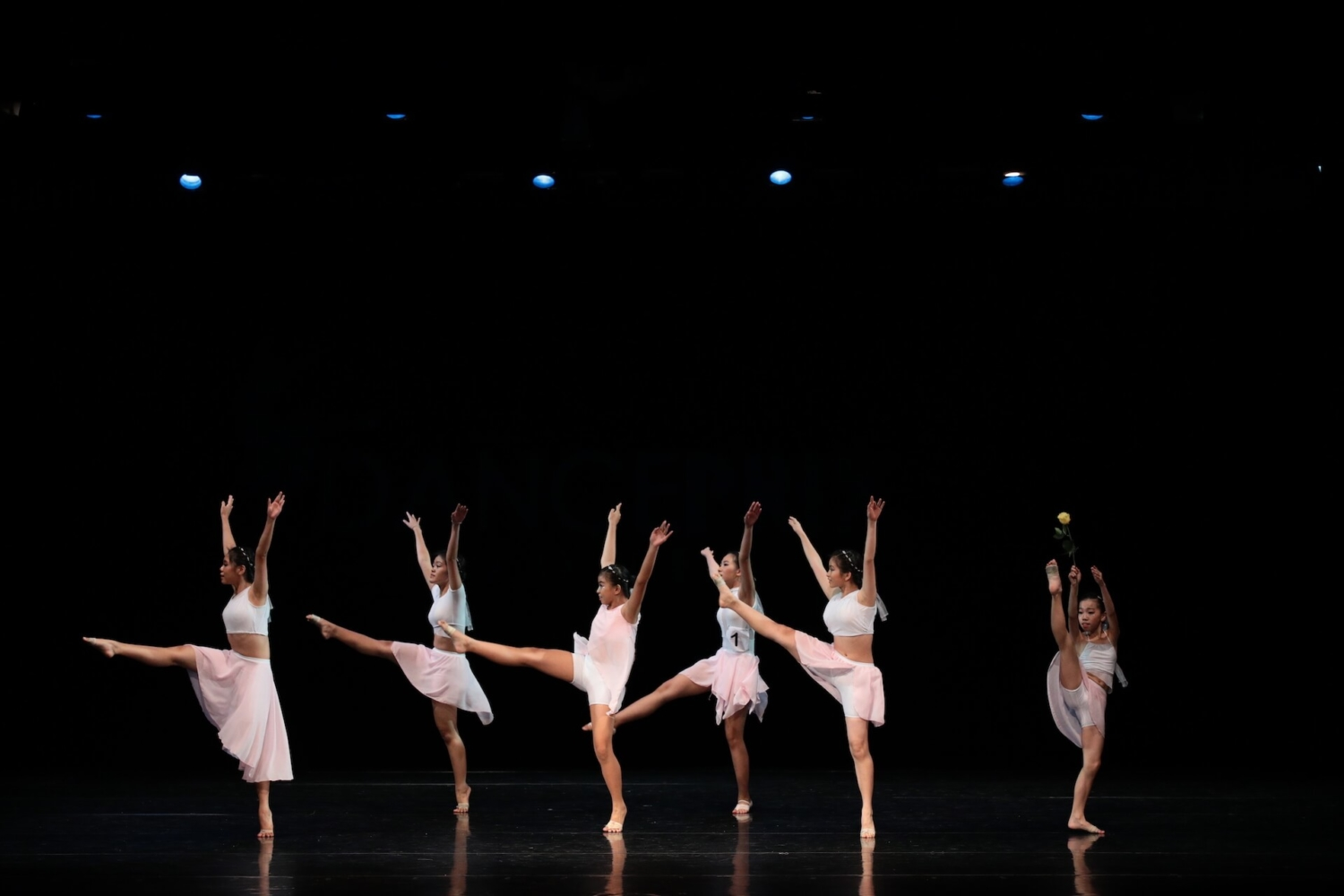 Dance Prix Indonesia 2019 – Contemporary Group Candidate, Clara School of Ballet